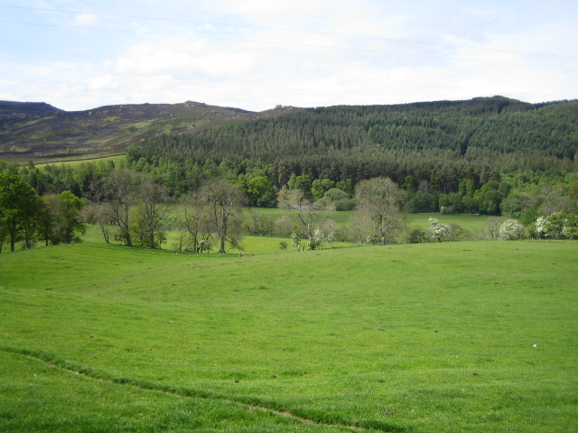 Coquetdale near Low Alwinton - geograph.org.uk - 456112