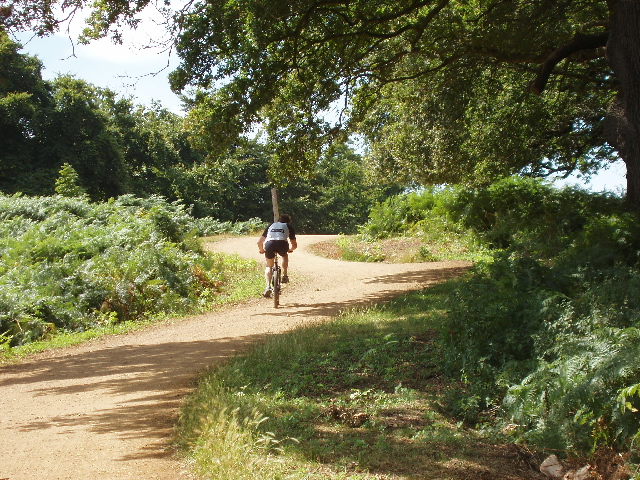 Cyclist in Richmond Park - geograph.org.uk - 909993