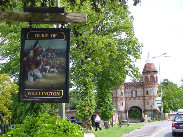 Duke of Wellington Pub Sign - geograph.org.uk - 438849