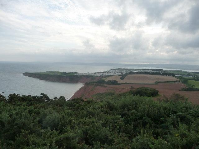 File:East Devon , Bushes, Headland and Coastal Scenery - geograph.org.uk - 1478065.jpg
