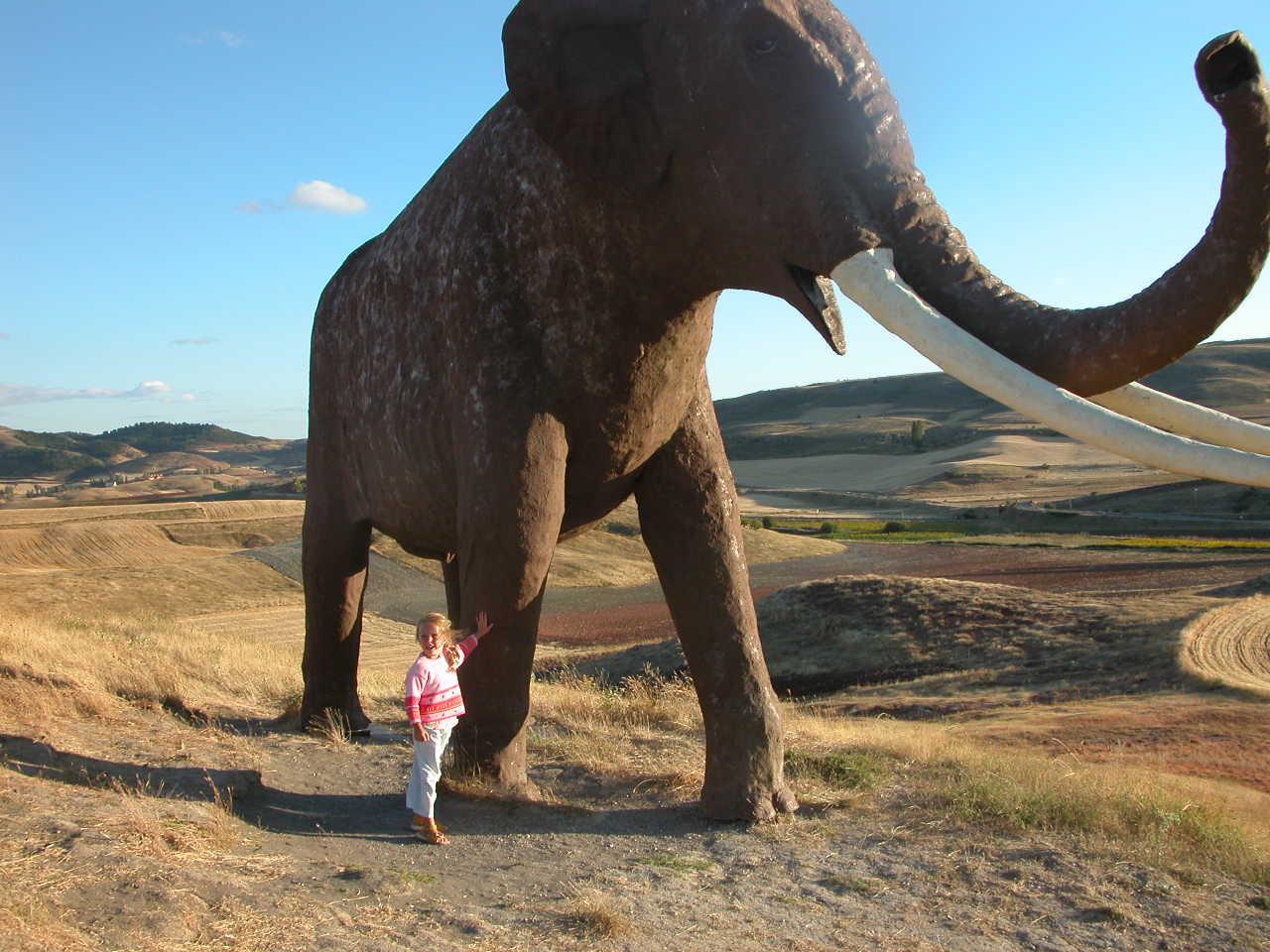 File:Elephas Antiquus Ambrona.jpg - Wikimedia Commons