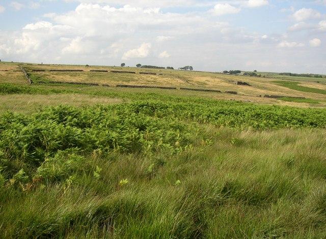 file enclosures on marginal land deer hill bents meltham geograph org