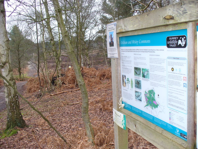 Entering Wisley Common - geograph.org.uk - 1088988