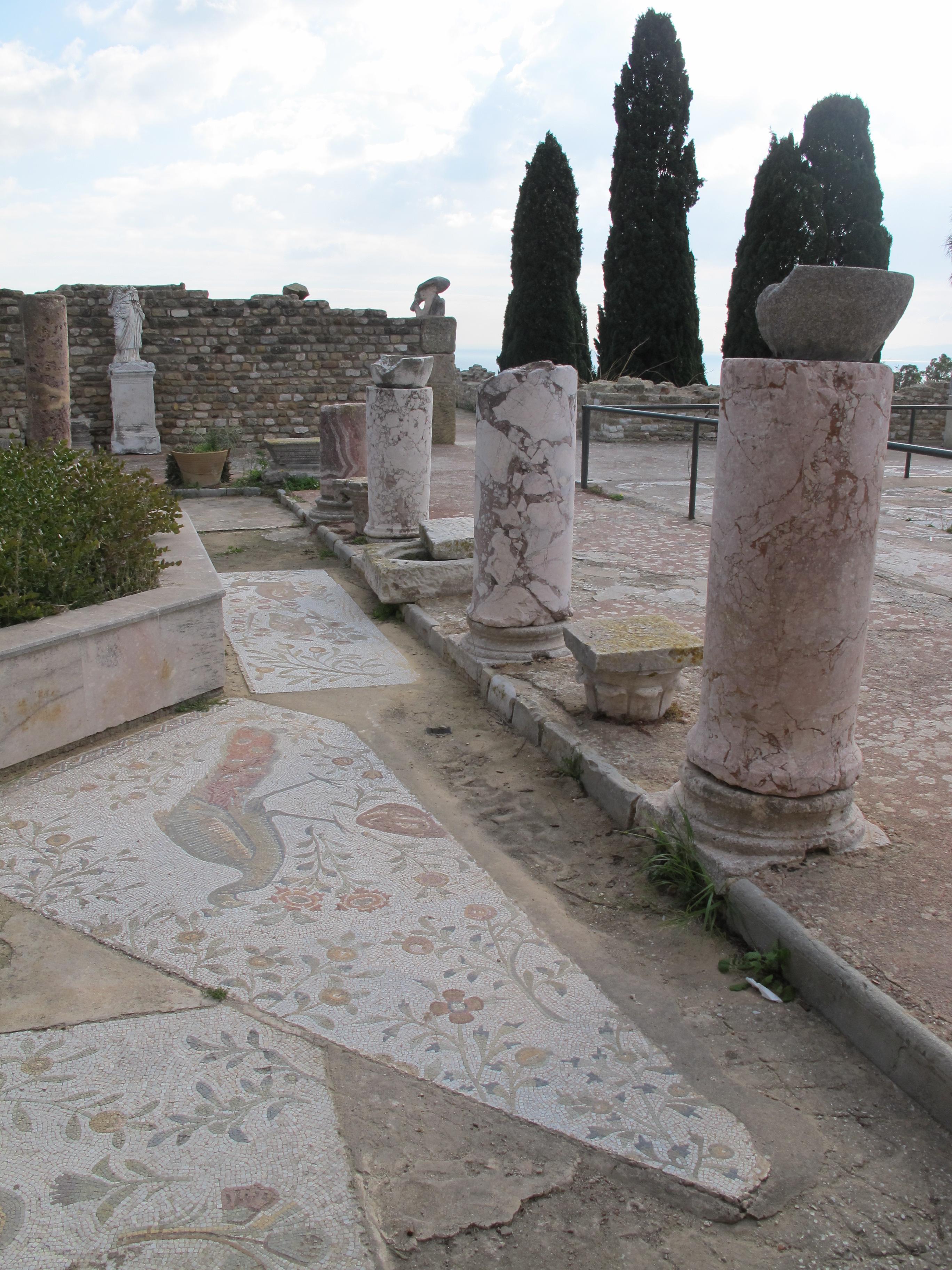 Mosaikausschnitt, Roman Villas in Karthago Tunesien Januar 2015 09.JPG