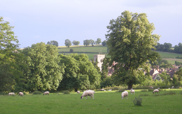 Much Wenlock on an evening in summer - geograph.org.uk - 874860