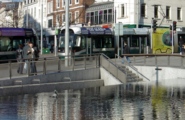 File:Photographing pigeons in the pool - geograph.org.uk - 694389.jpg
