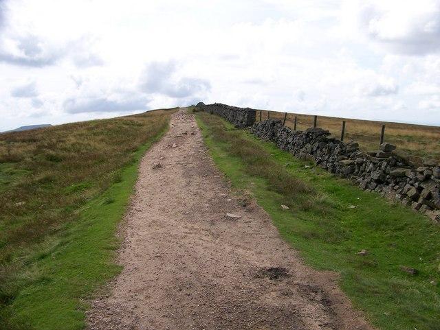Ridge Path on Whernside - geograph.org.uk - 1750858