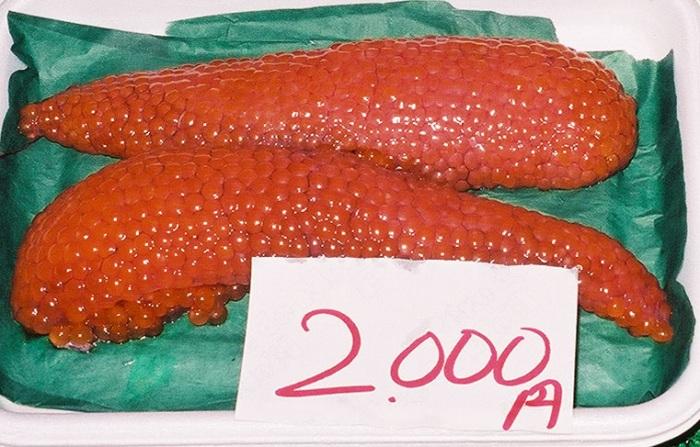 File salmon wikipedia for Roe fish eggs