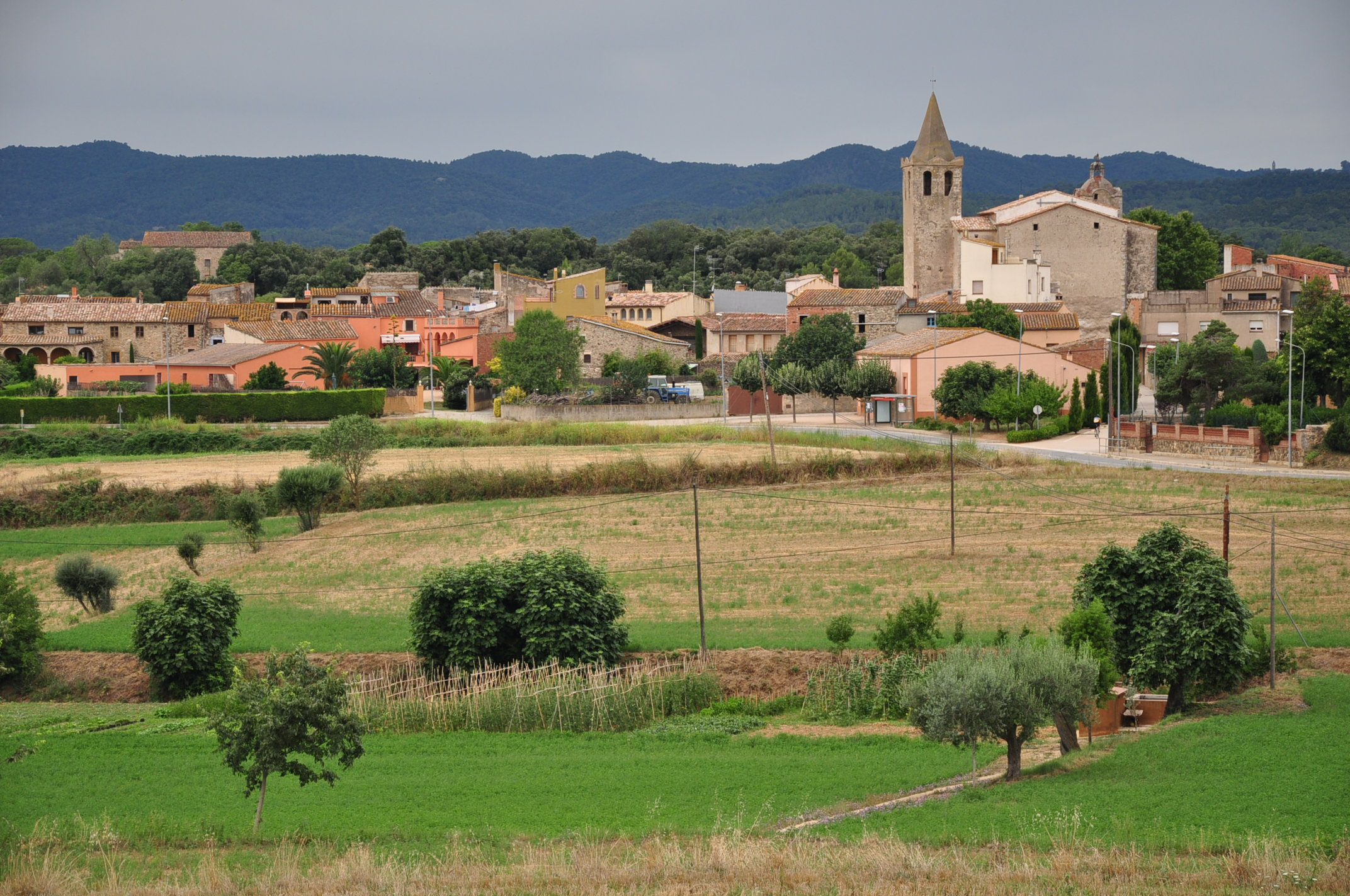 File Spain Catalonia Sant Sadurní De L Heura 1 Jpg Wikimedia Commons