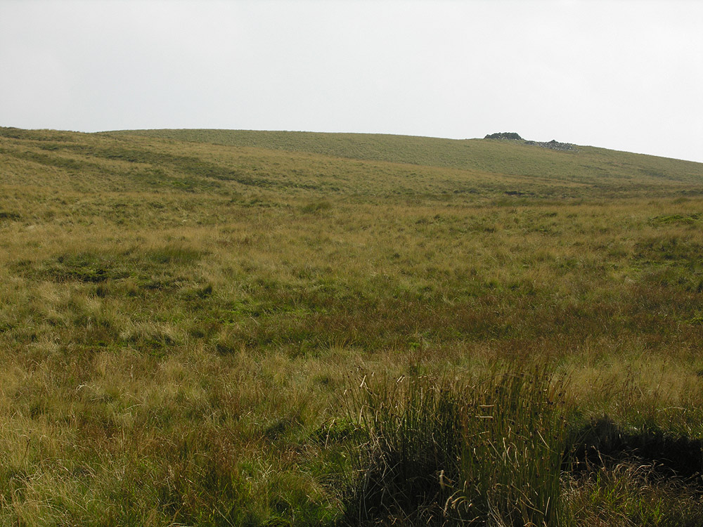 File:Trawsallt approach from the north - geograph.org.uk - 479787.jpg