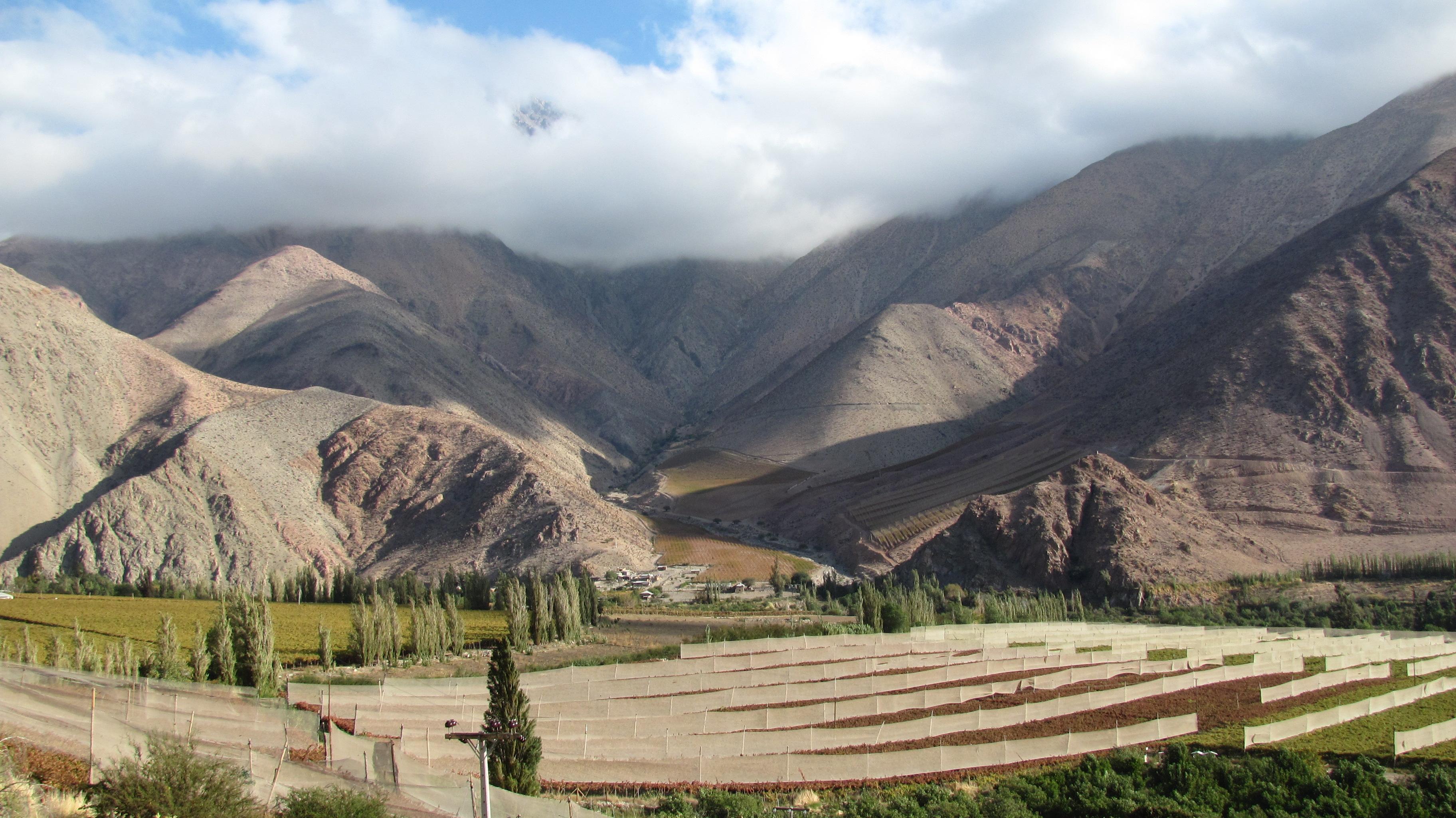 Vale de Elqui – Wikipédia, a enciclopédia livre