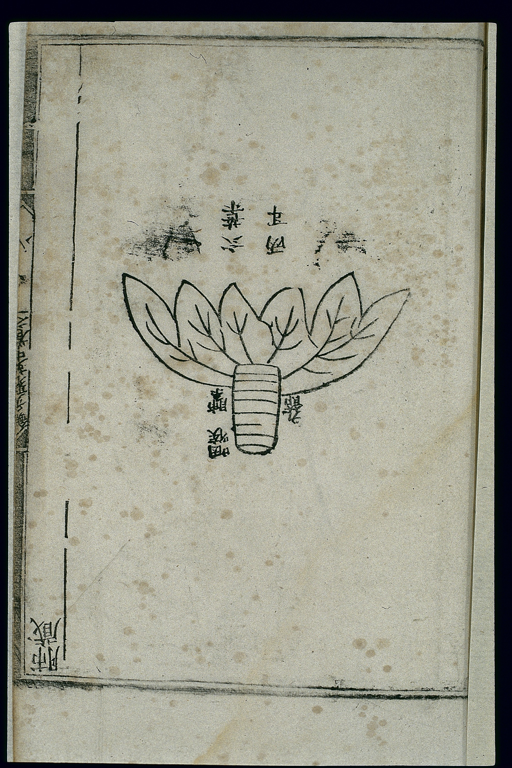 Fileanatomy Of The Lung In Ancient Chinese Medicine Woodcut