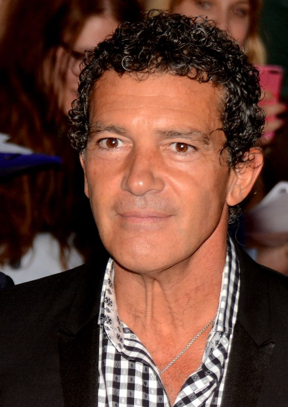 Description Antonio Banderas 2014.jpg