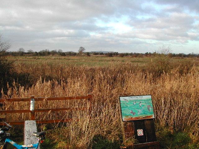 Congresbury Moor - geograph.org.uk - 95814