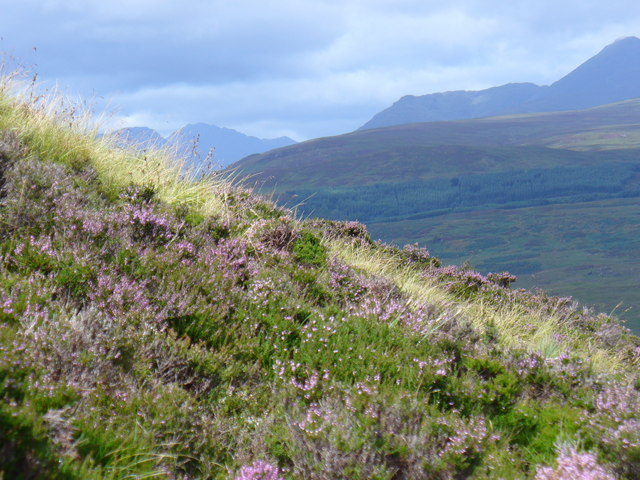 Conic Hill - geograph.org.uk - 218498