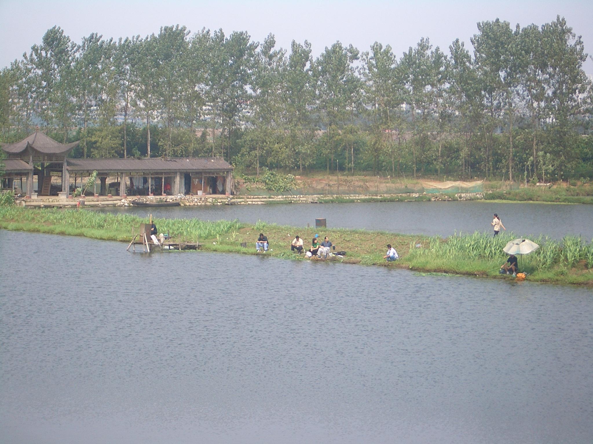 Fish pond - Wikipedia