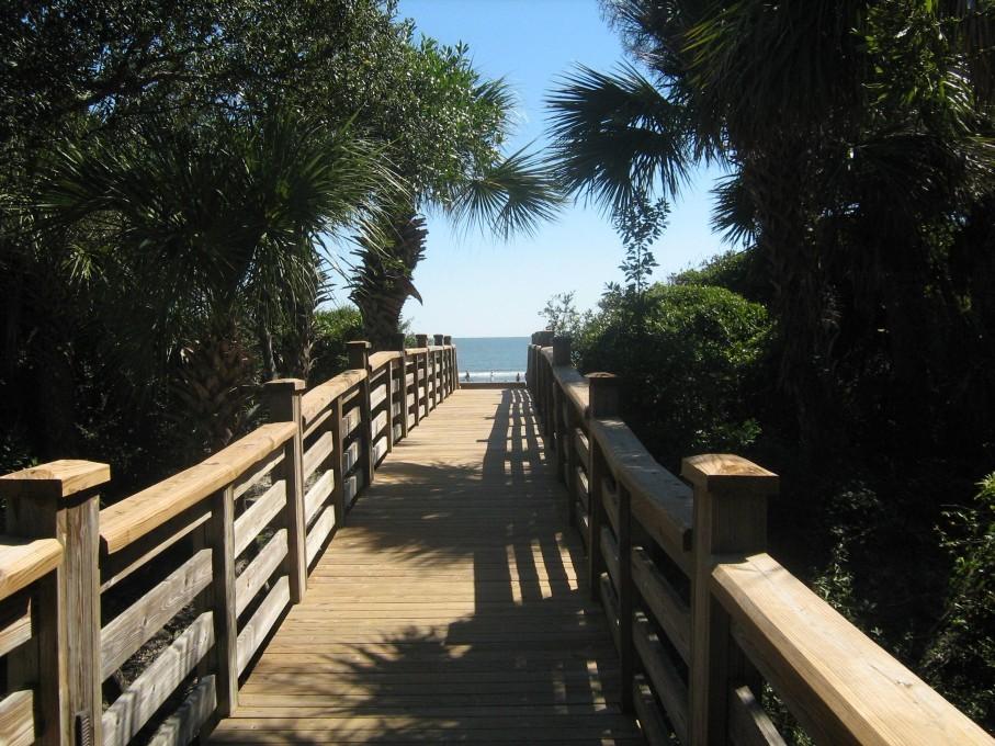 Homes for Sale in Palmetto Dunes, Hilton Head Island, SC