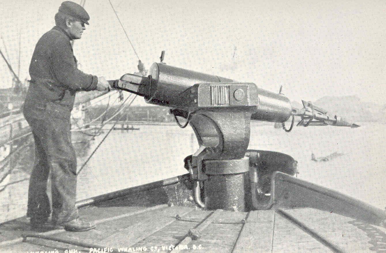 File Fmib 44620 Whaling Gun Showing Harpoon Jpeg