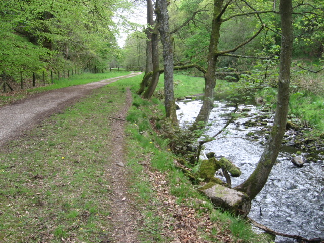 Footpath by the River Goyt - geograph.org.uk - 1295366