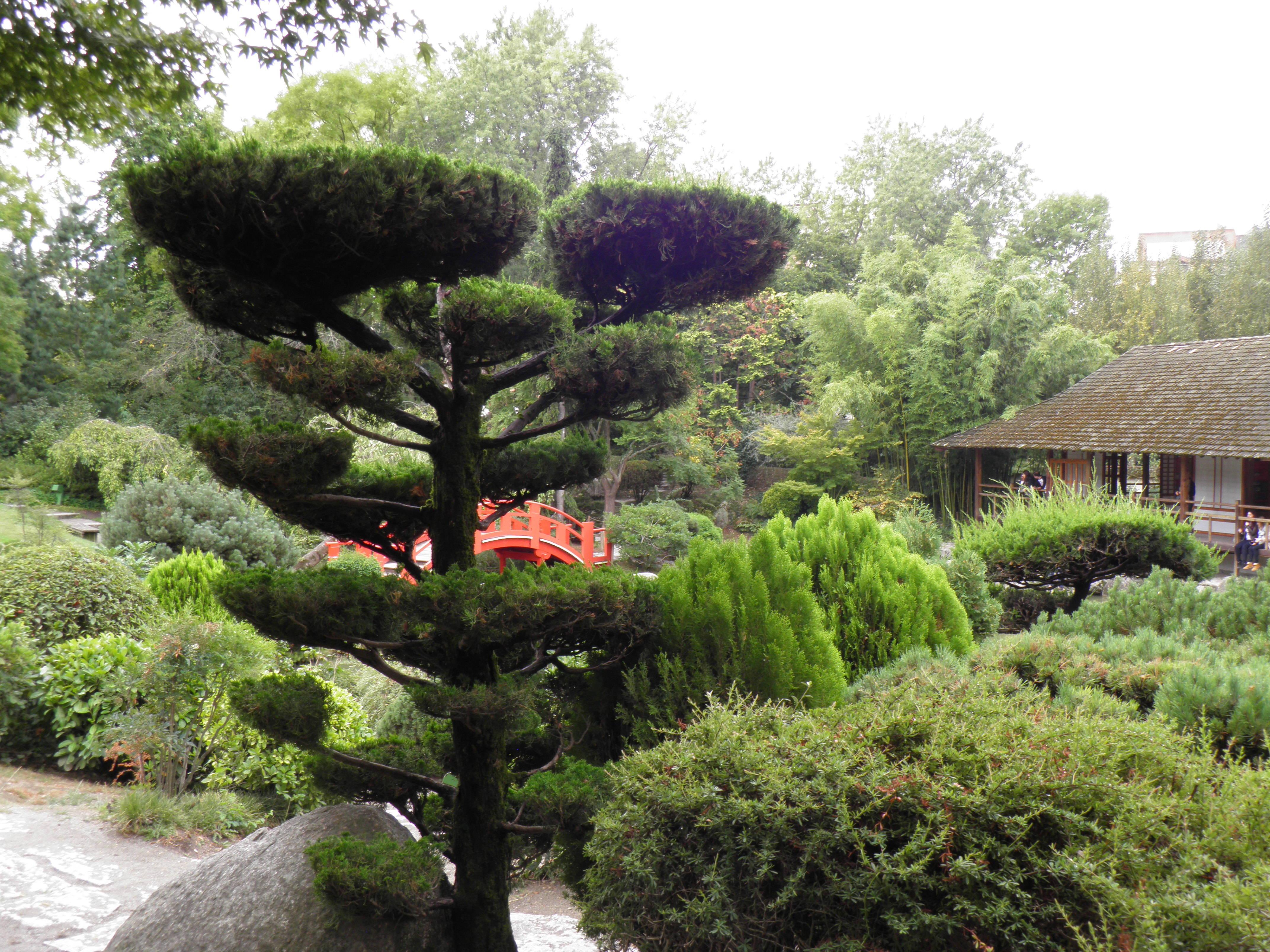 File:Jardin japonais - pont et salon de thé (Toulouse) (2).jpg ...
