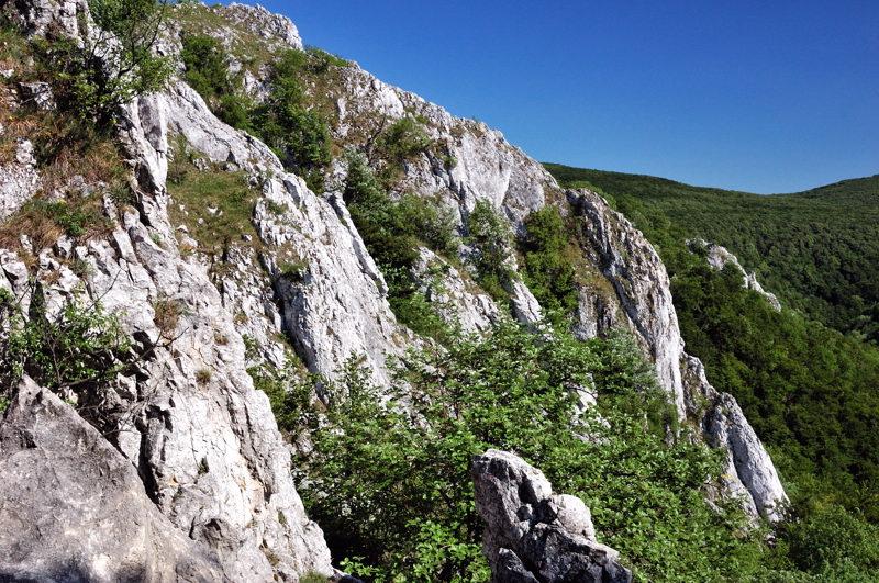 File:Krslenica 12.jpg