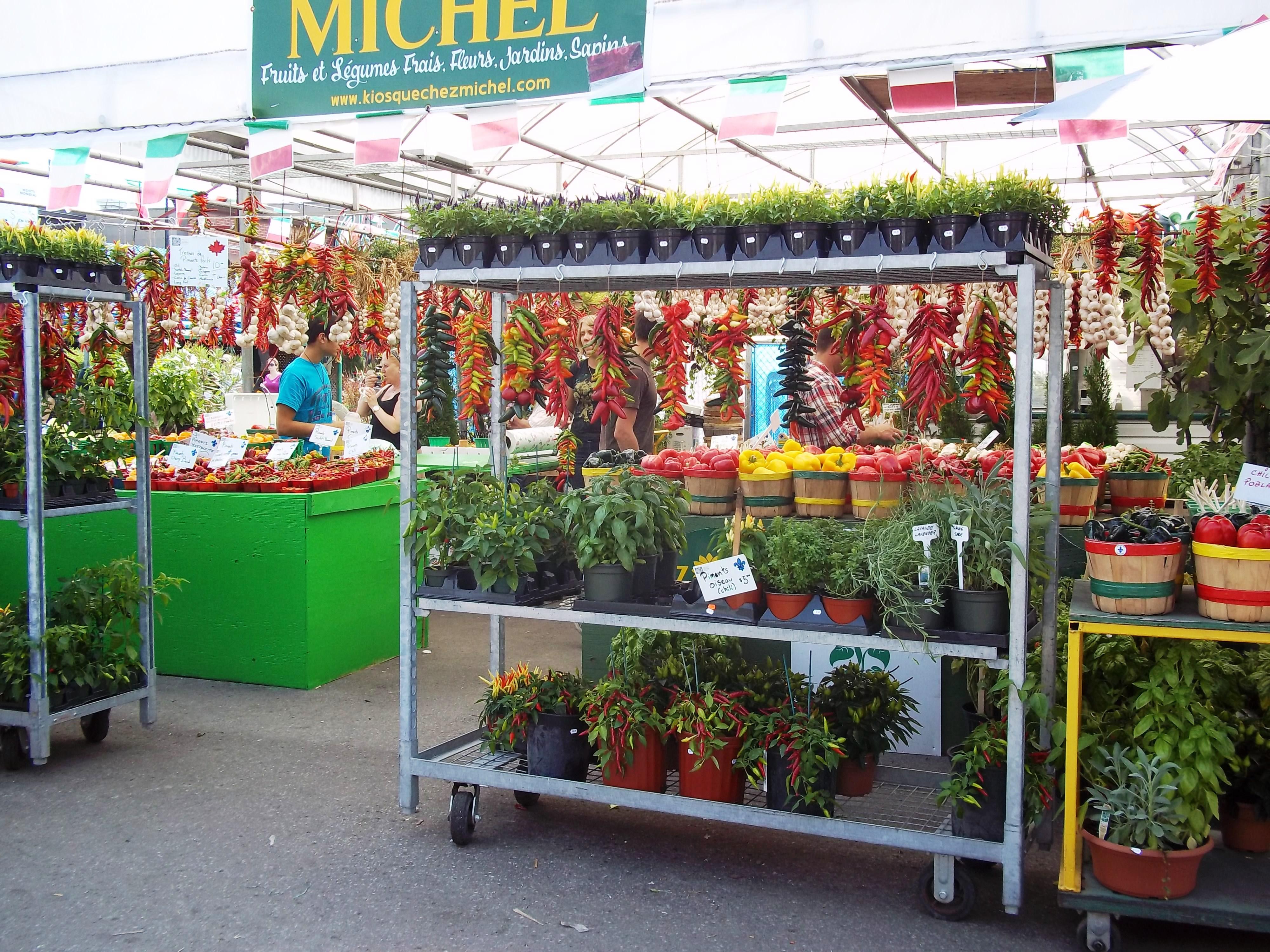 Balcony Kitchen Garden Balcony Garden My Lighthearted Kitchen