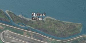Mallard Island Island in California