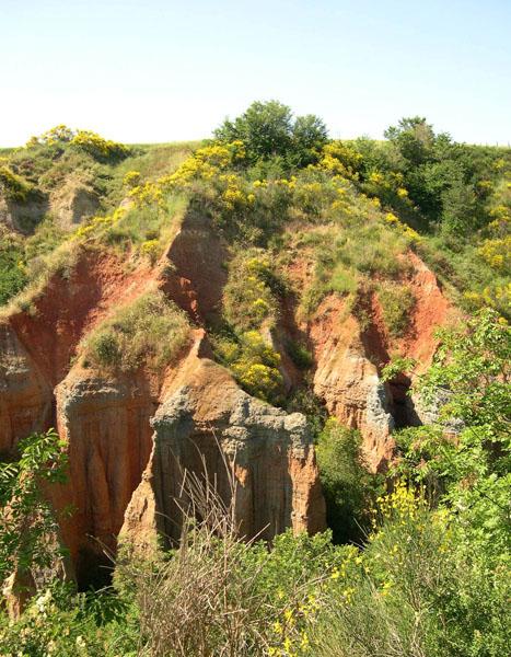 Paleosol wikipedia for Rocks and soil wikipedia