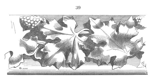 File wikimedia commons - Feuille de vigne dessin ...