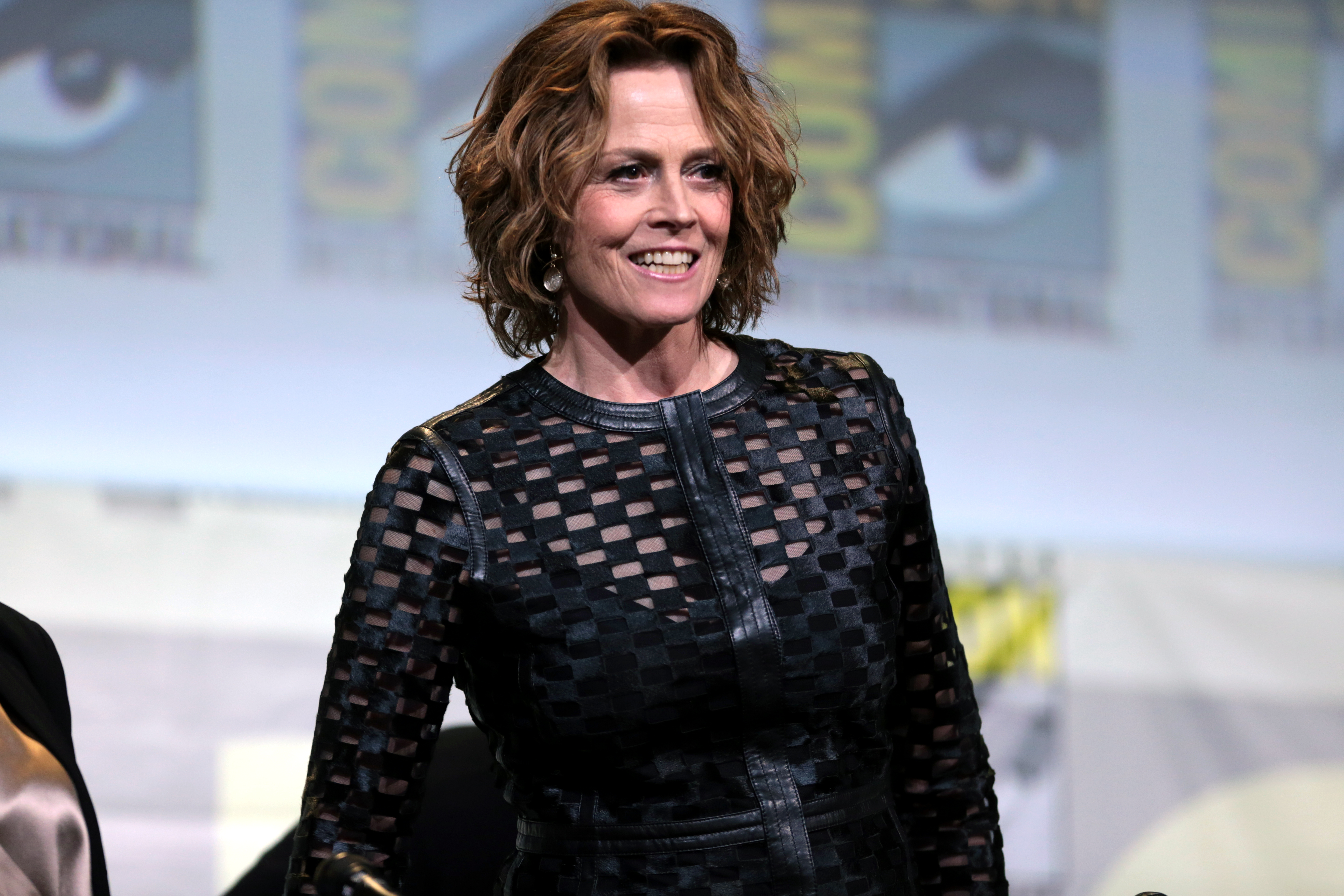 TheFappening Sigourney Weaver naked (63 photos), Ass, Fappening, Twitter, swimsuit 2019