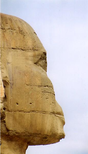 https://upload.wikimedia.org/wikipedia/commons/b/bd/SphinxProfil.jpg