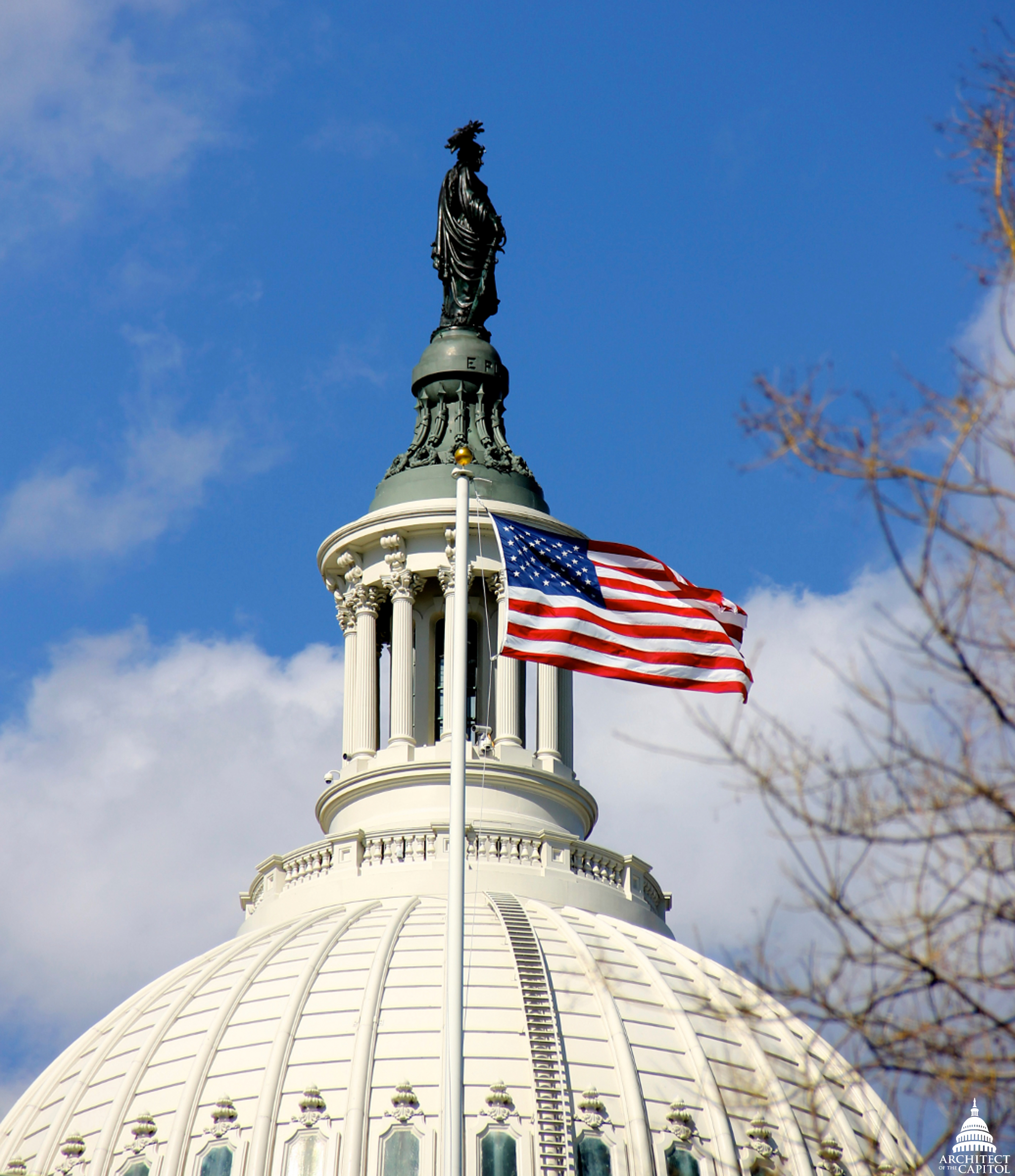 FileStatue of Freedom with flag flying over US House of