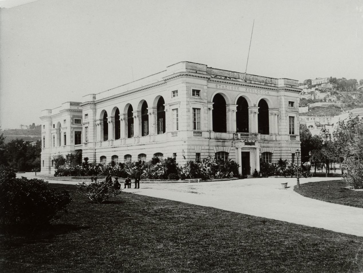 Stazione Zoologica, Naples ca. 1901