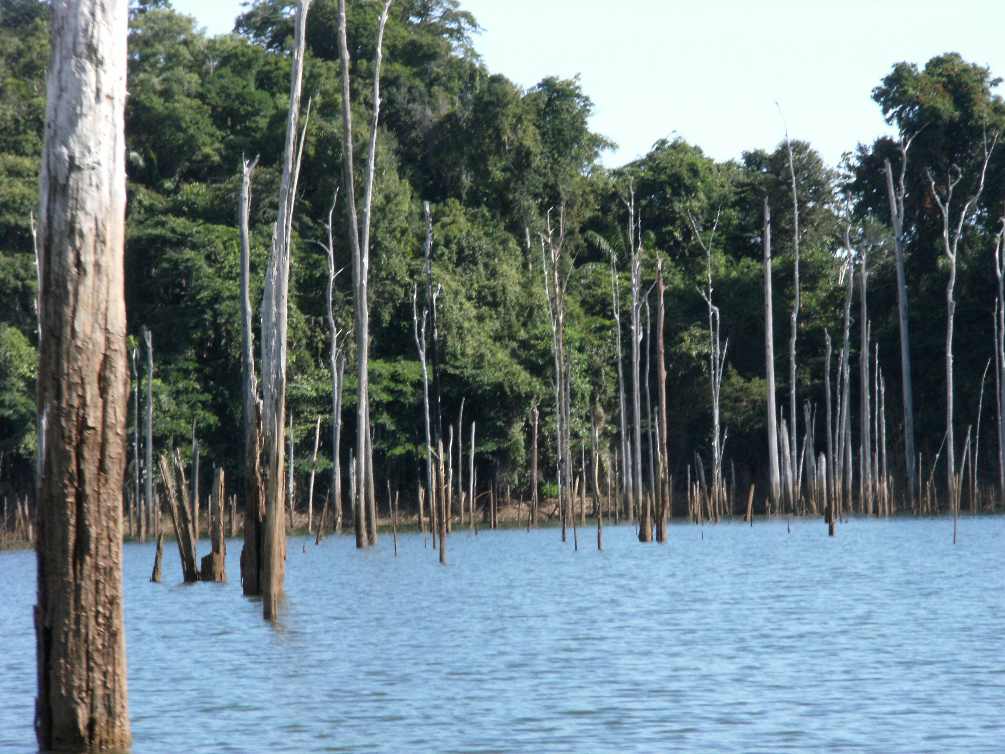 Description suriname brokopondo reservoir2 jpg
