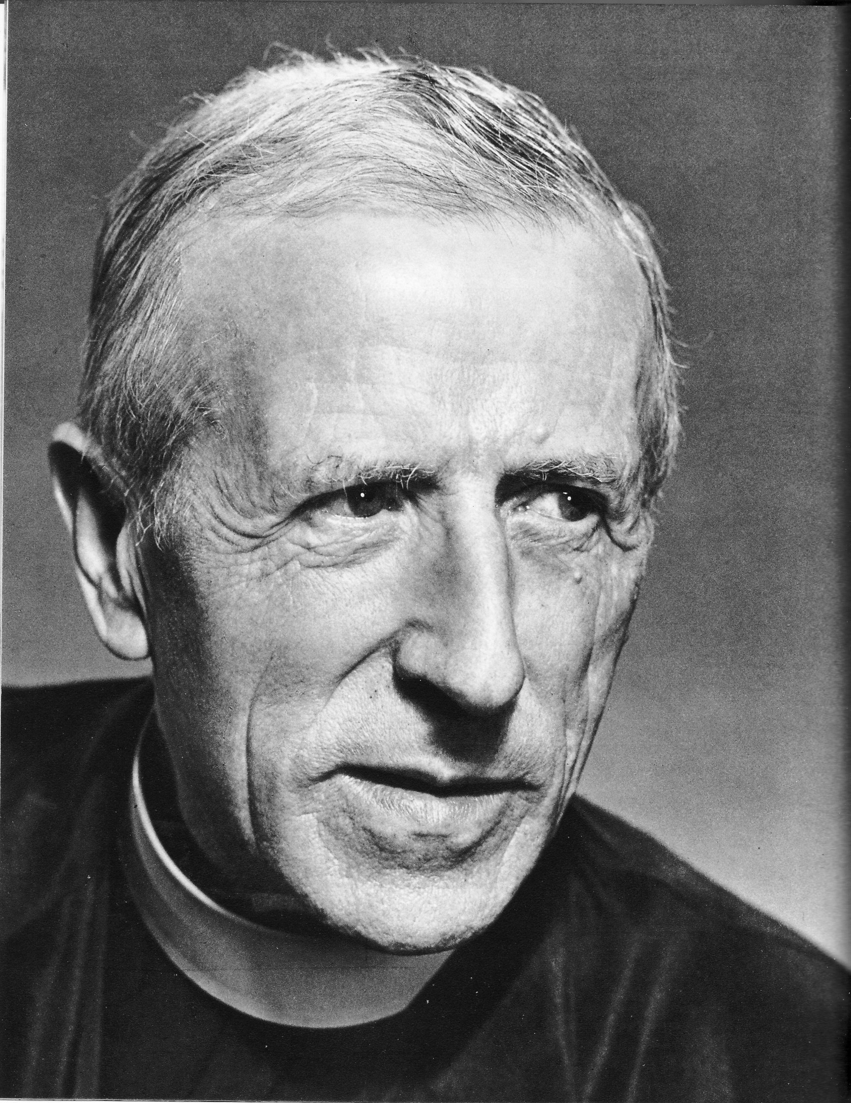 The philosophical works of pierre teilhard de chardin