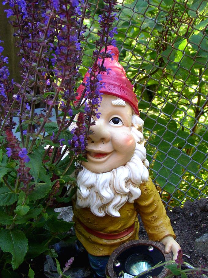 Gnome In Garden: File:Tomte (gnom) (810665390).jpg