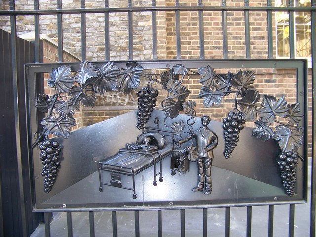 decorative railings. File A decorative panel in the railings  geograph org uk 573486