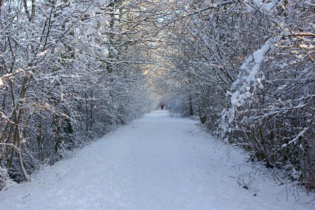 A snowy Worth Way - geograph.org.uk - 1653024