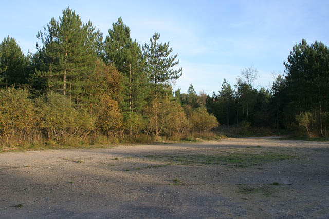 A walk through Twyford Wood, No 1 - geograph.org.uk - 272030