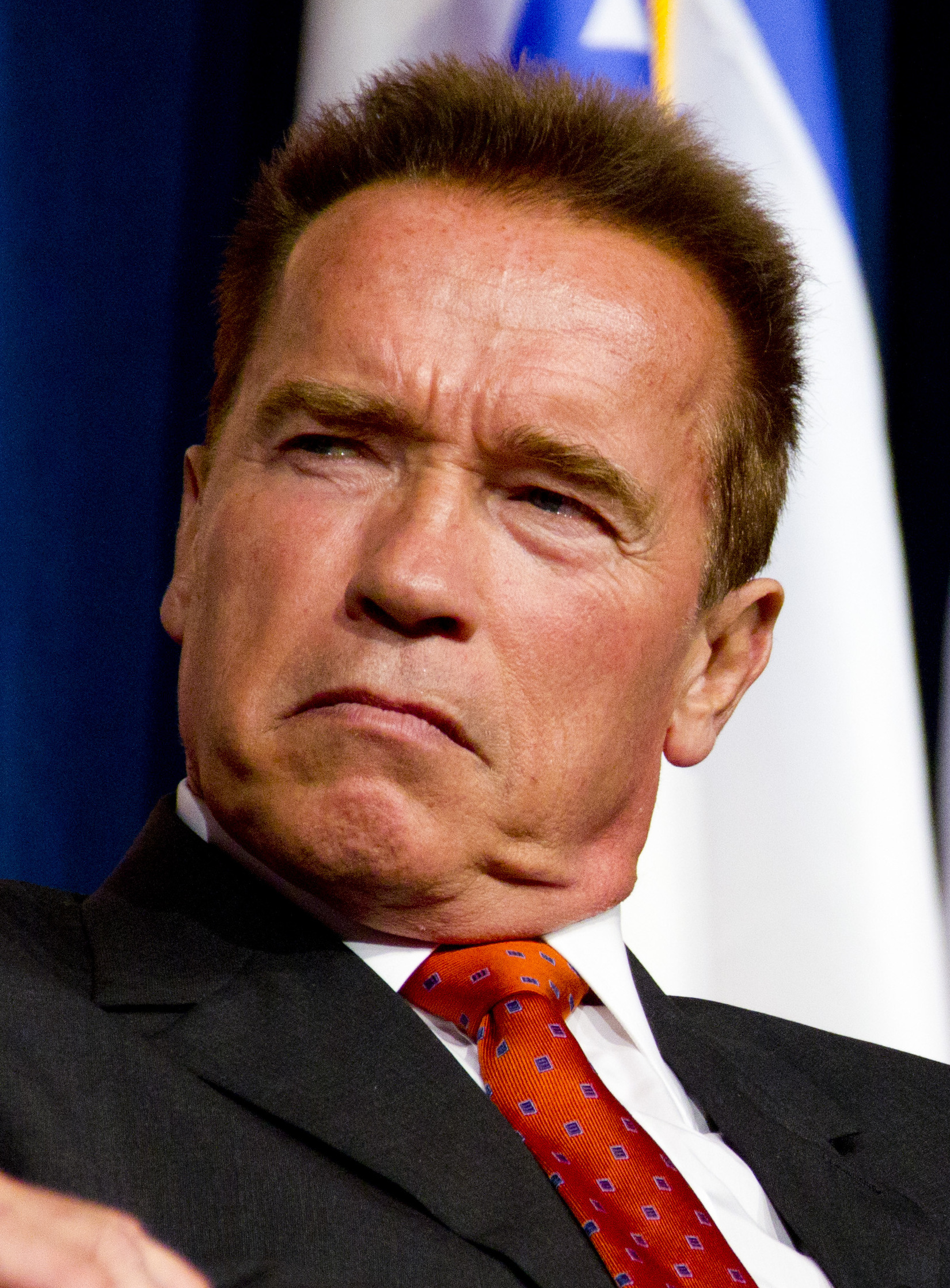 Description Arnold Schwarzenegger 2  2012