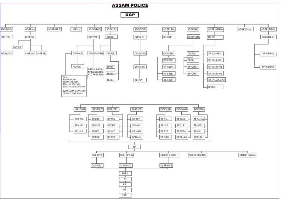 Organizational Chart Microsoft Word: Assam Police Organizational structure.jpg - Wikimedia Commons,Chart