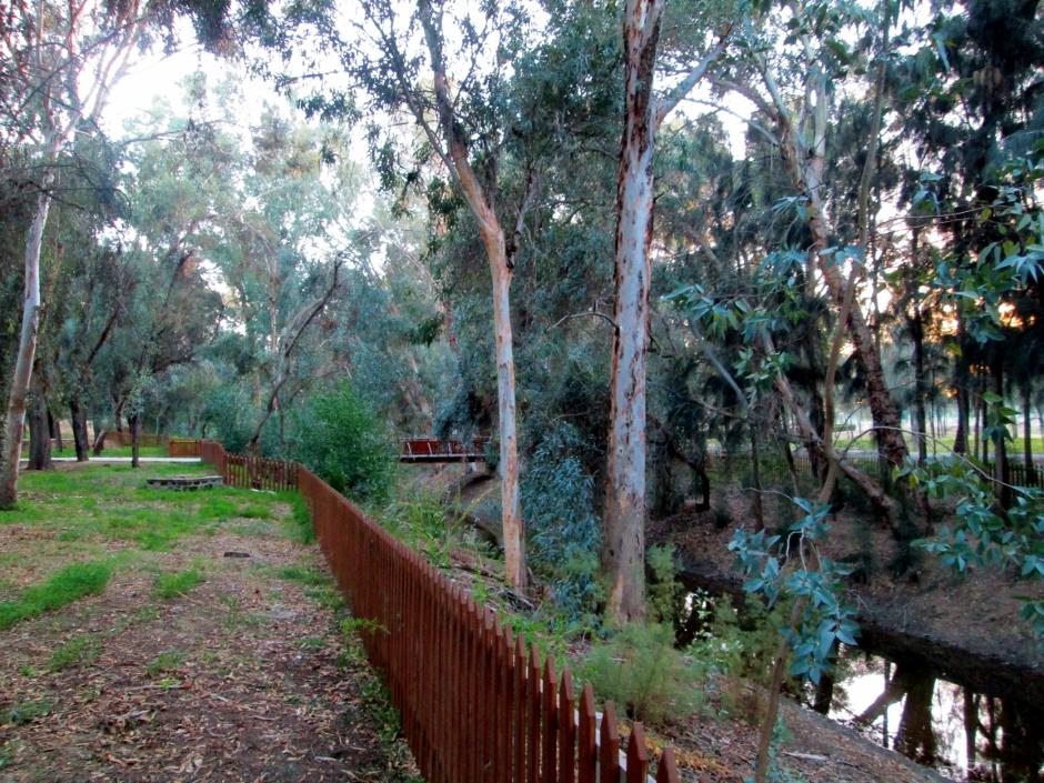Athalassa Natural Park - Cyprus