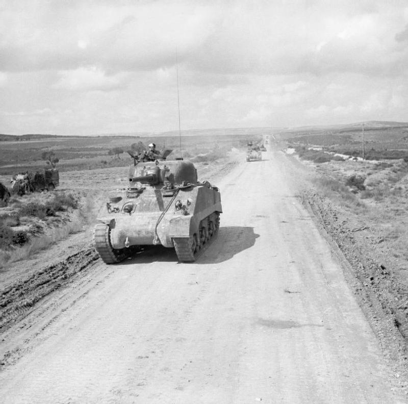 Shermans in Tunisia