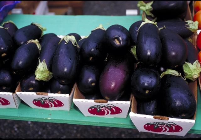 Fichier:Eggplant (USDA OPC).jpg