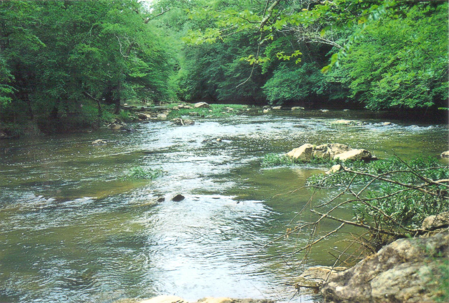 File:Eno River State Park Eno River one.jpg - Wikimedia ...