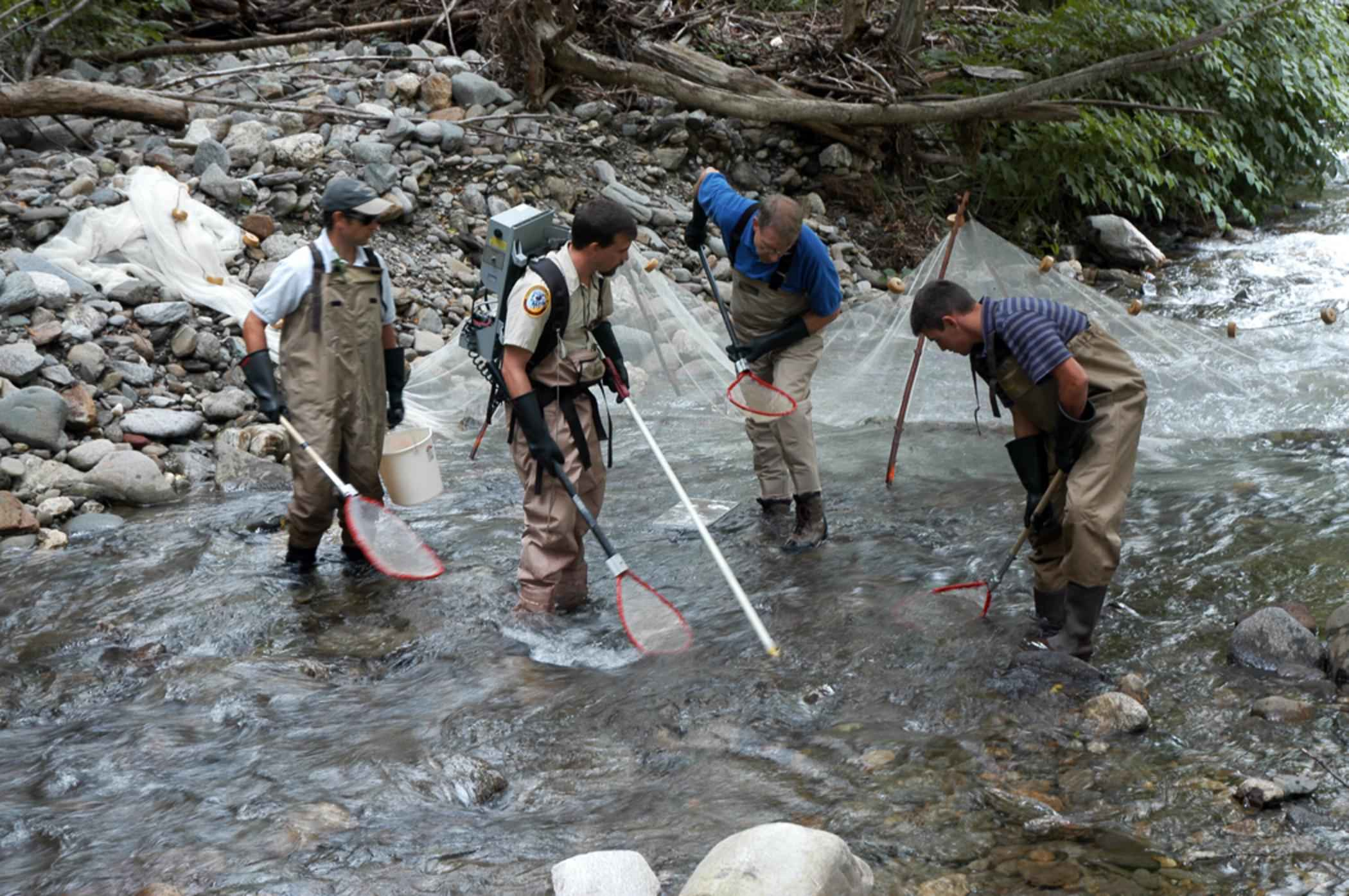 File fishermen damming shallow fast mountain river and for Fish catching net