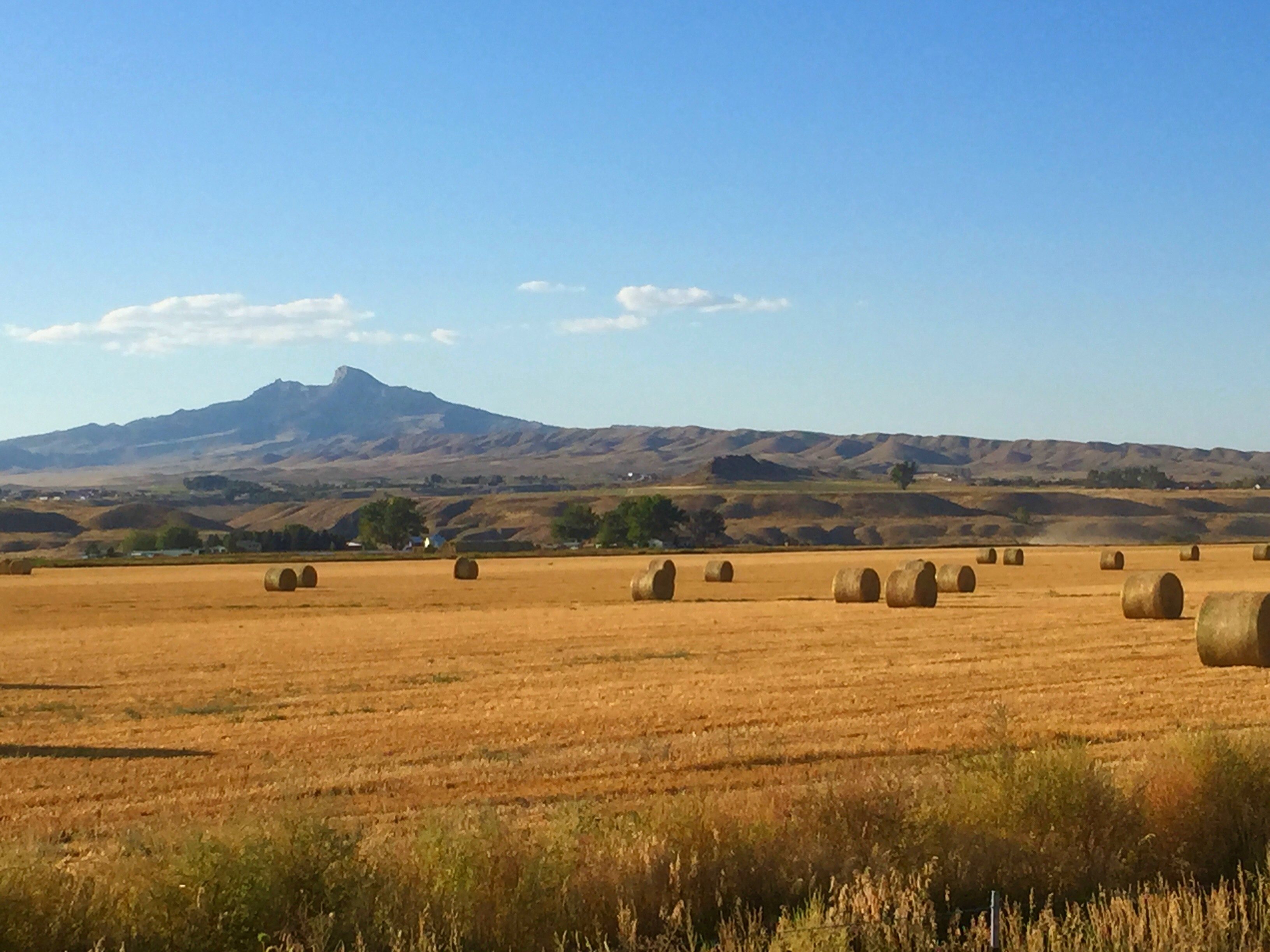File Hay Rolls And Heart Mountain Cody Wyoming