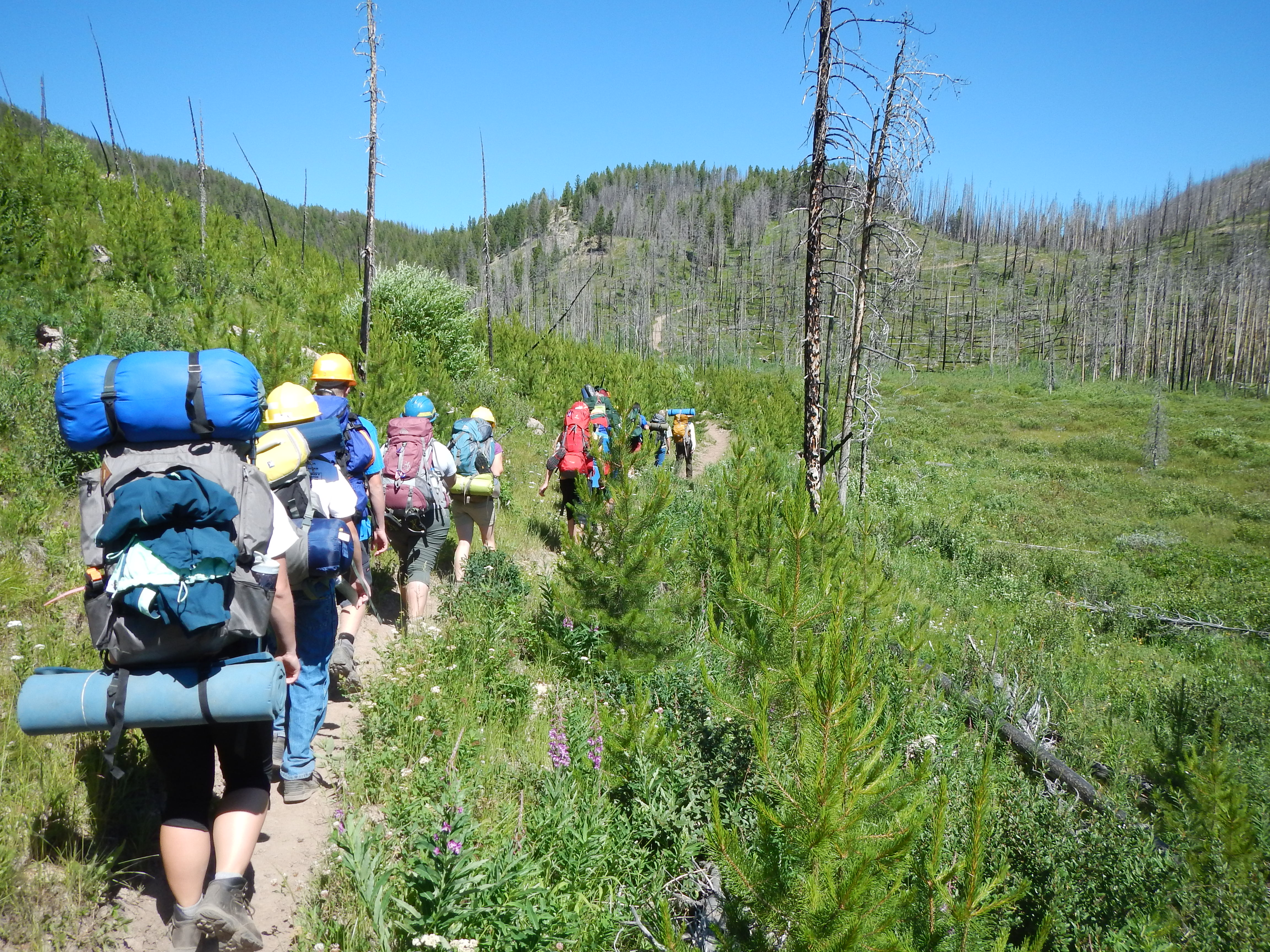 File hiking in the scapegoat wilderness jpg wikimedia commons