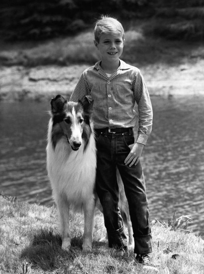 File:Jon Provost Lassie 1961.JPG - Wikimedia Commons