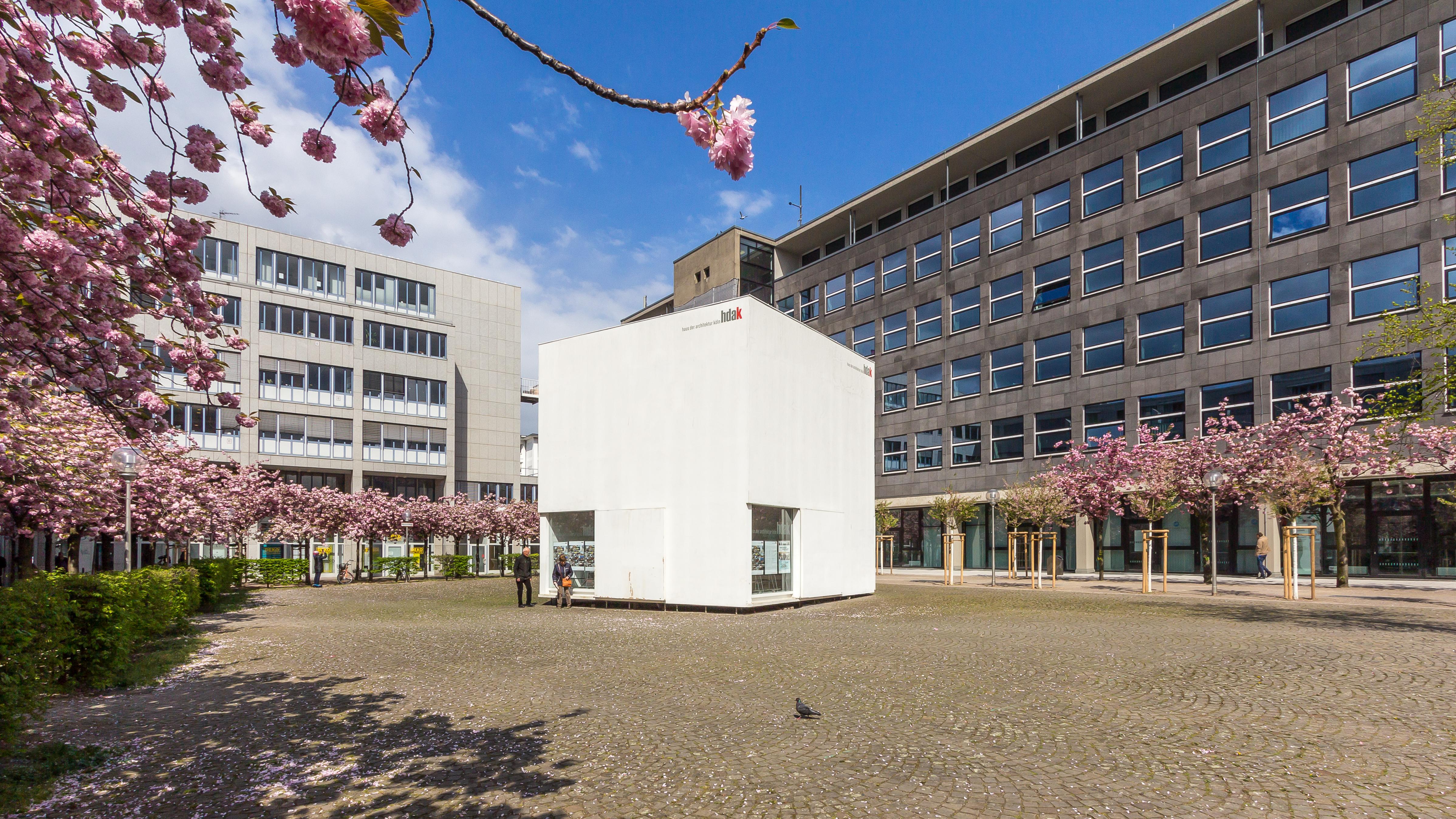 Architektur Köln haus der architektur köln